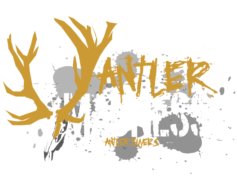 Antler Madness Antler Buyers - Idaho Falls