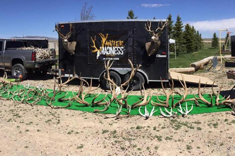 Antler Madness at a show